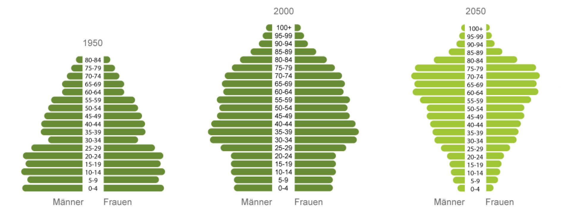 Der demographische Wandel in Deutschland